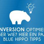 Conversions optimieren um einen besseren ROI zu erzielen für Deine Kampagnen