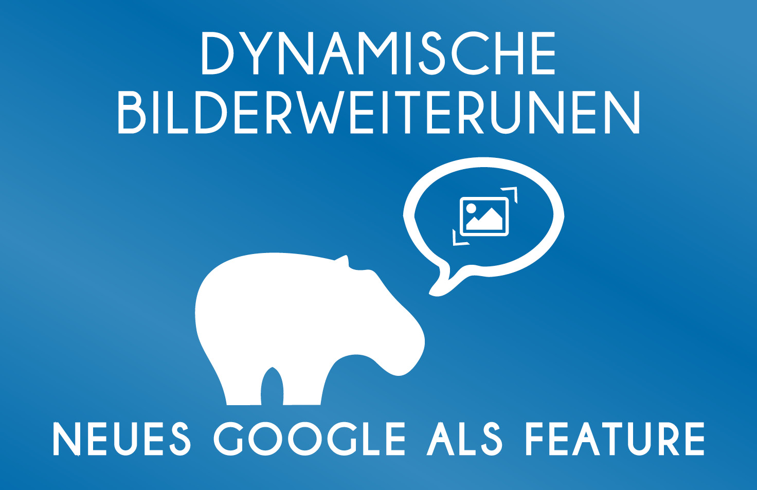 Dynamische Bilderweiterungen - neues Google Ads Feature - Blue Hippo zeigt was Du beachten musst