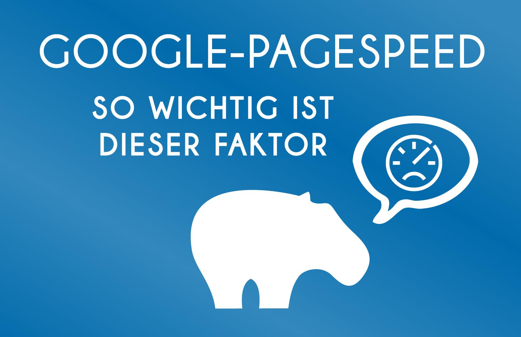 Google Pagespeed - so wichtig ist dieser Faktor