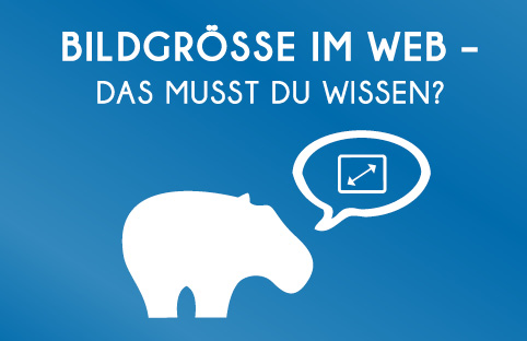 Was sind die gängigsten Bildgrössen im Web? Blue Hippo zeigt Dir was Du wissen musst bezüglich der Bildgrößen im Netz.
