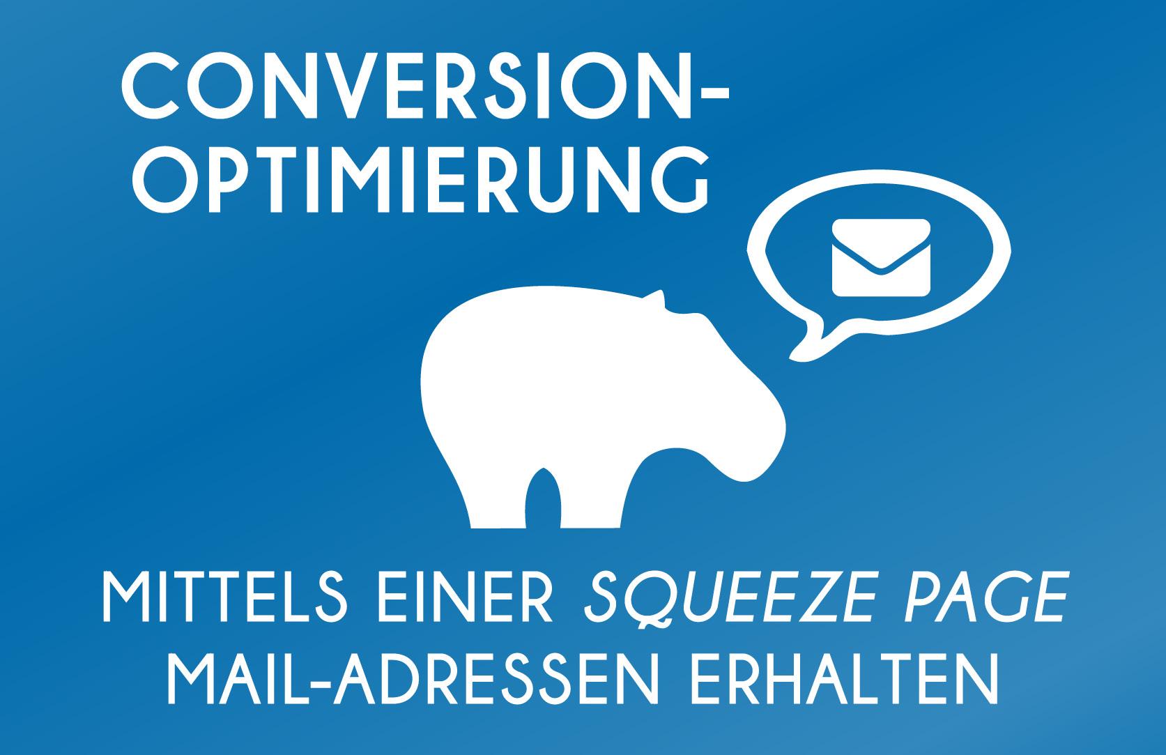 Conversion Optimierung mittels einer Squeeze Page Mail Adressen erhalten