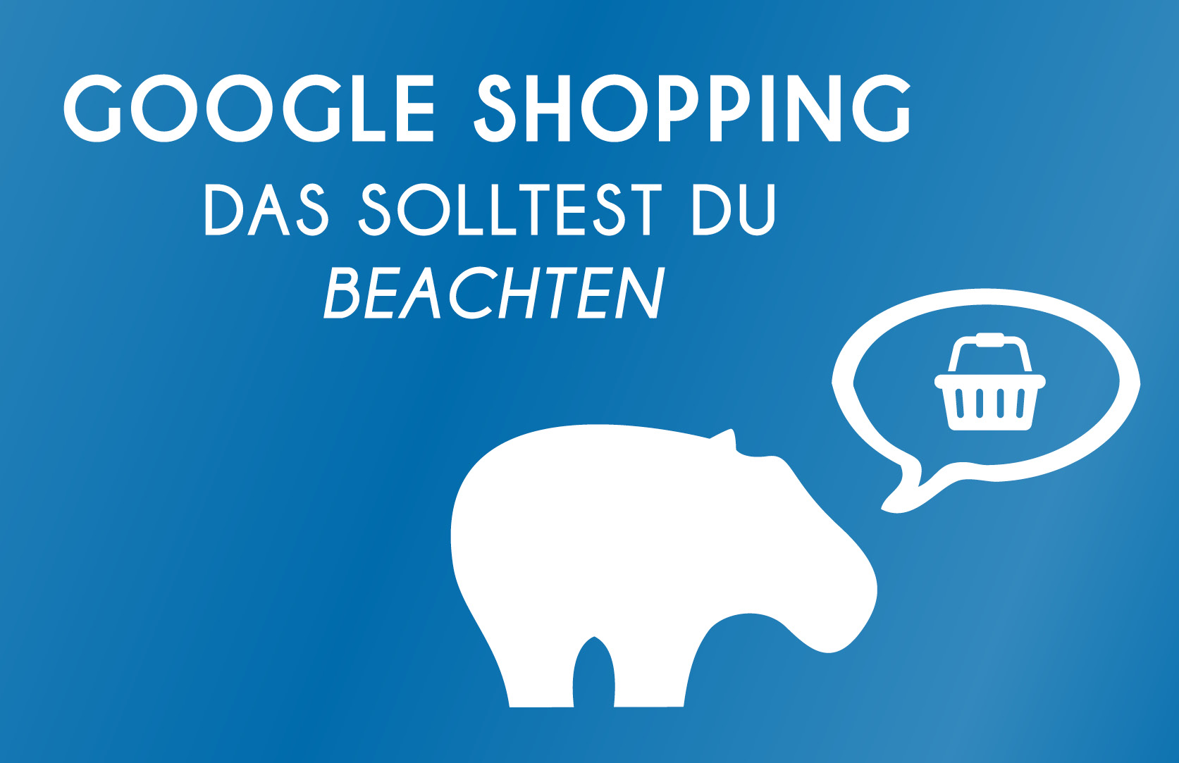 Google Shopping - Das solltest Du beachten wenn Du eione Google Shopping Kampagne erstellst